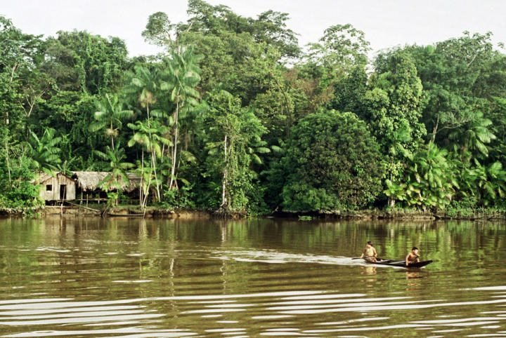 """Amazon River / Photo: Francisco Chaves / <a href=""""https://creativecommons.org/licenses/by/2.0/deed.en"""">License</a>"""